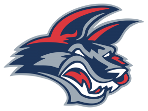 Superhero Night w/ Elmira Jackals @ First Arena | Elmira | New York | United States